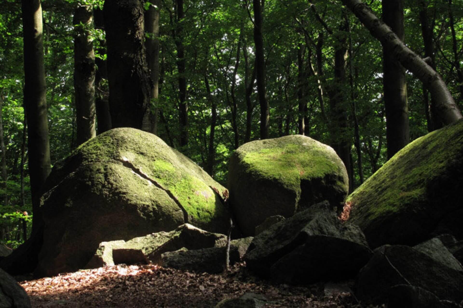 Der Odenwald bietet ein ruhiges Umfeld zum Bouldern